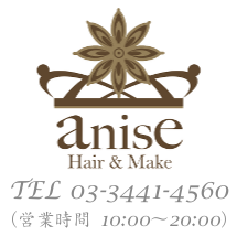 Hair & Make anise